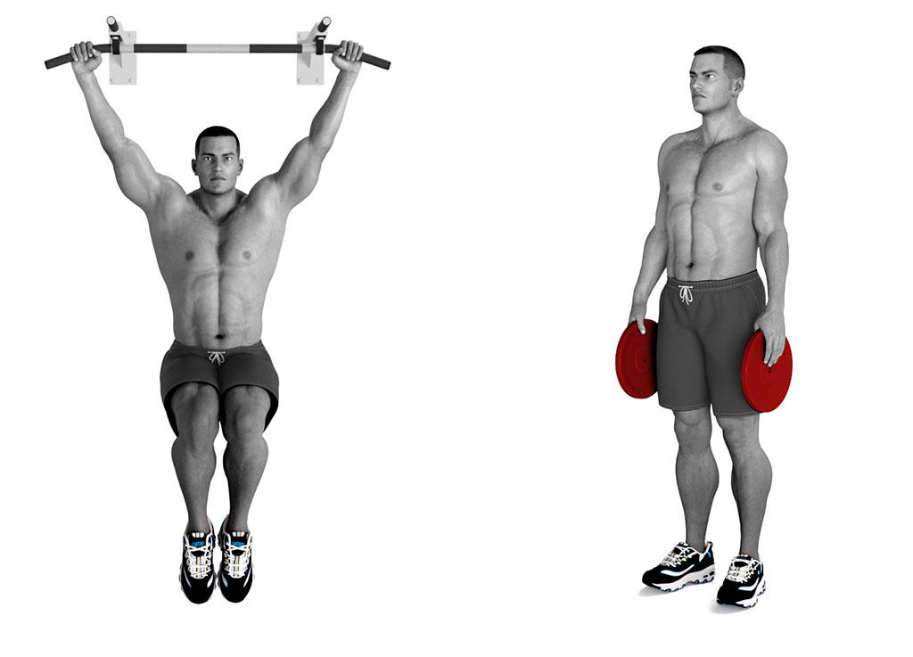 fuerza de agarre ejercicios