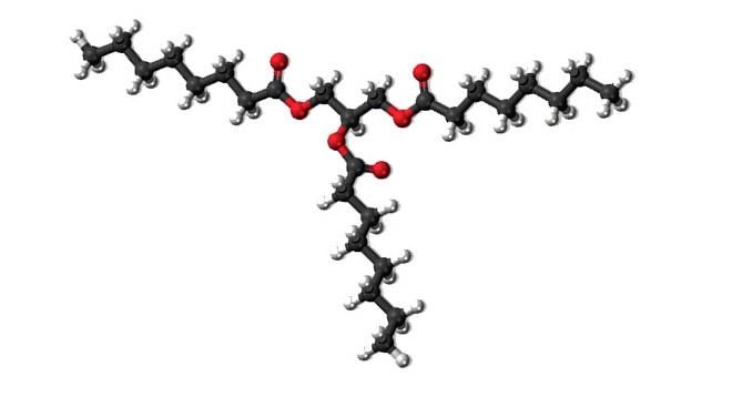 molecula_mct